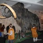 Mammoth Museum children's party