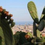 views of Sagrada Familia