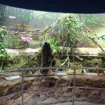 inside Aquarium Barcelona