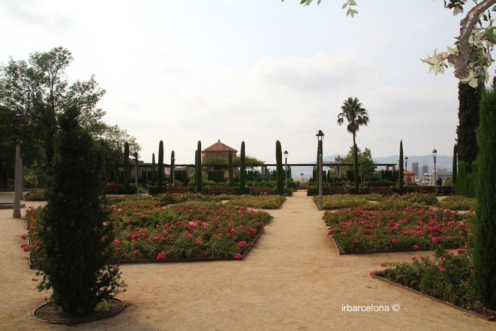 flowers jardins Teatre Grec