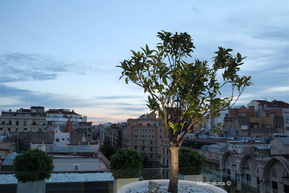 Barcelona Rooftops Best Roof Terrace Hotels Bars 2020