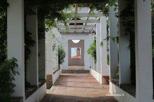 Teatre Grec Gardens