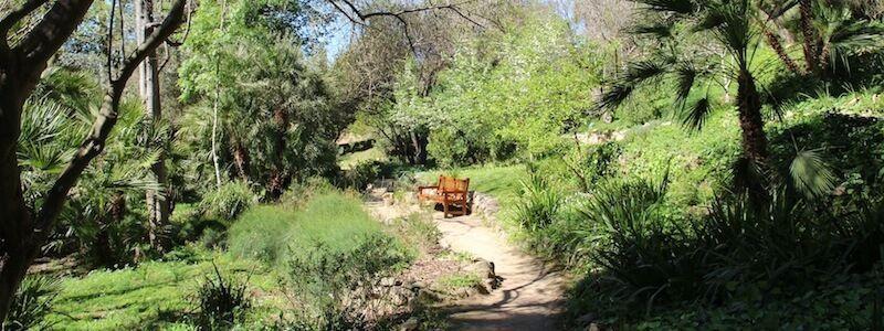 Barcelona's Historical Botanical Gardens