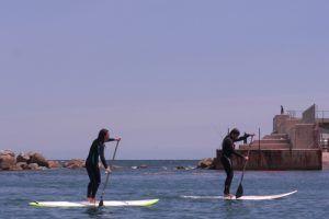 Kayak and Paddle Surf