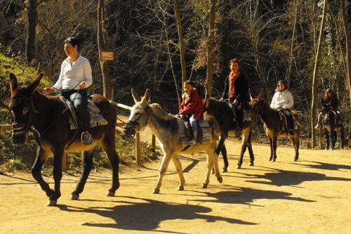 booking Catalan Donkey Trekking