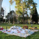 Picnic Barcelona Park